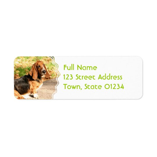 Basset Hound Sitting Mailing Labels