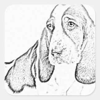 Basset hound square sticker