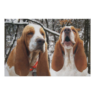 Basset Hounds in Snowy Woods Poster