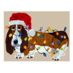 Basset Tangled In Christmas Lights Postcard