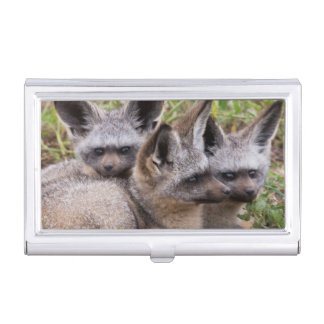 Bat-Eared Foxes, Serengeti National Park Business Card Holder