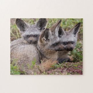 Bat-Eared Foxes, Serengeti National Park Jigsaw Puzzle