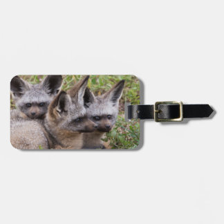 Bat-Eared Foxes, Serengeti National Park Luggage Tag