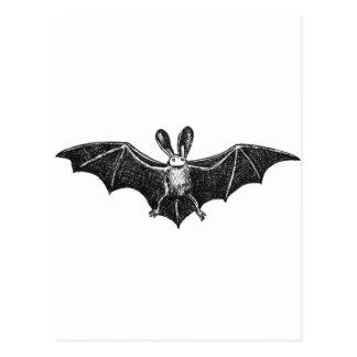 Bat illustration post cards