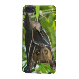 Bat iPod Touch (5th Generation) Covers