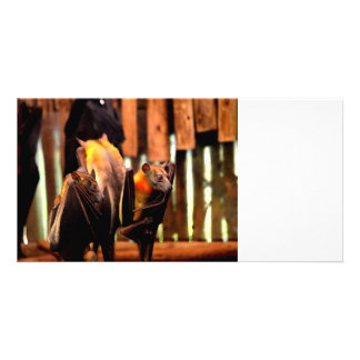 bat painting critter animal standing up customised photo card