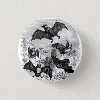 Bat Sketch 3 Cm Round Badge