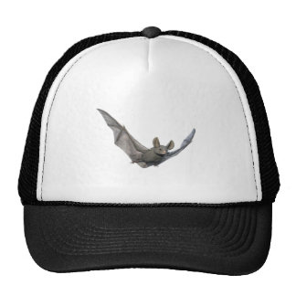 Bat with wings on the upstroke cap