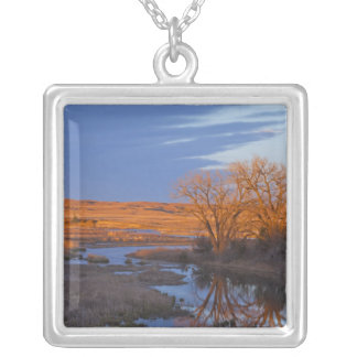 Bathed in sunset light the Calamus River Silver Plated Necklace