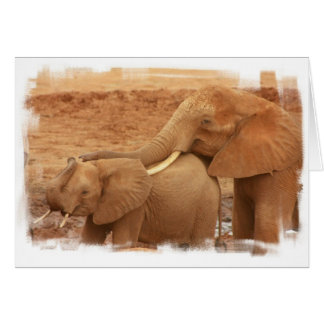 Bathing Baby Elephant Greeting Card