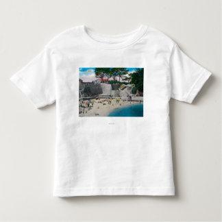 Bathing Beach at Pacific Grove Shirt