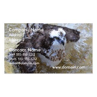 Bathing Osprey Business Card Templates