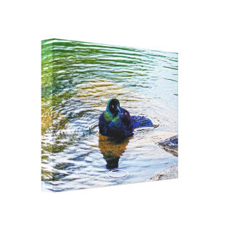 Bathing Time for the Starling #2 Gallery Wrapped Canvas