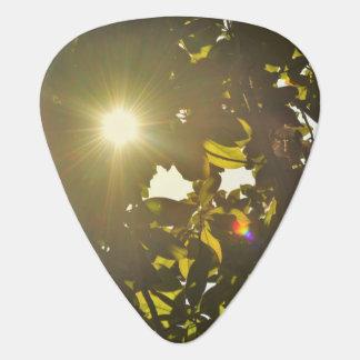 Baton Rouge Guitar Pick