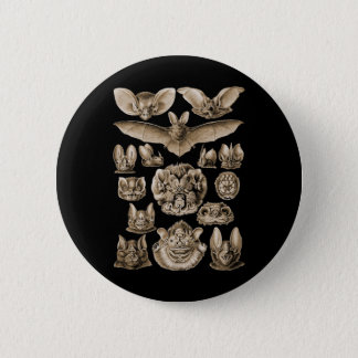 Bats 6 Cm Round Badge