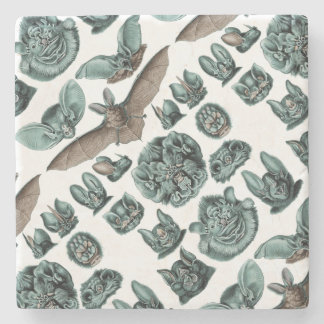 Bats by Ernst Haeckel Stone Coaster