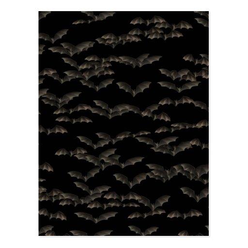Bats Post Card