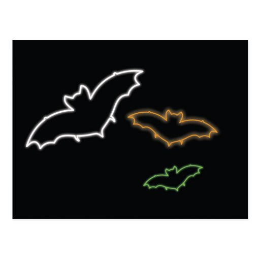Bats Postcard