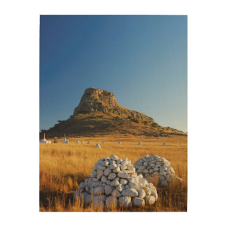 Battle Of Isandlwana Memorial Near Nqutu Wood Wall Art