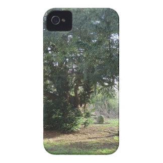 Battlefield Church near Shrewsbury iPhone 4 Covers