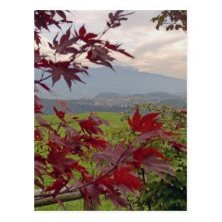 bavarian autumn postcards