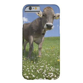 bavarian cow barely there iPhone 6 case