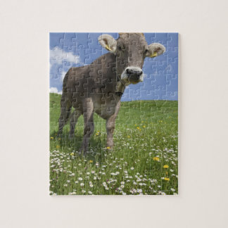 bavarian cow jigsaw puzzle