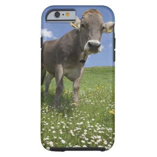 bavarian cow tough iPhone 6 case