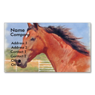BAY ANDALUSIAN MARE MAGNETIC BUSINESS CARDS