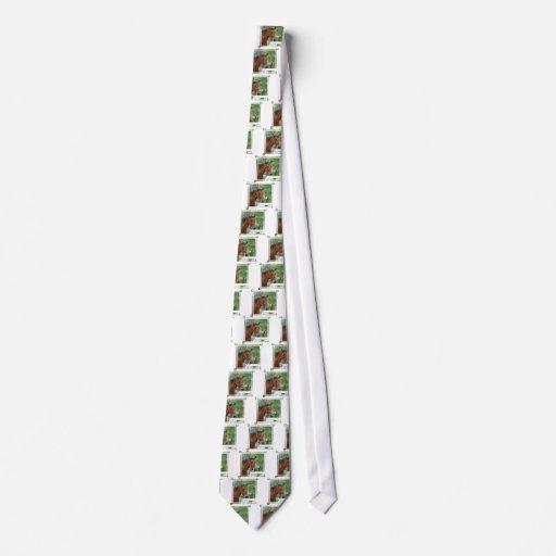 Bay Arab Horse Men's Necktie