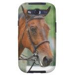 Bay Arab Horse Samsung Galaxy Case Galaxy S3 Covers