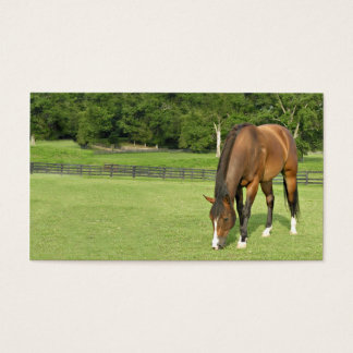 Bay horse business card