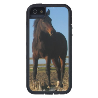 Bay Horse Case For The iPhone 5