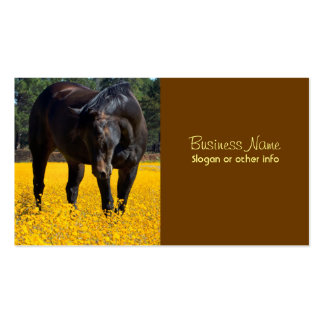 Bay Horse in a Field of Yellow Flowers Business Card Templates