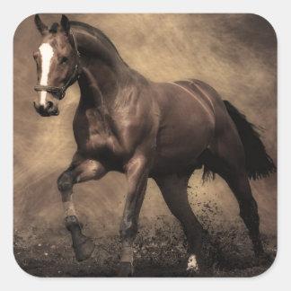Bay Horse Square Sticker