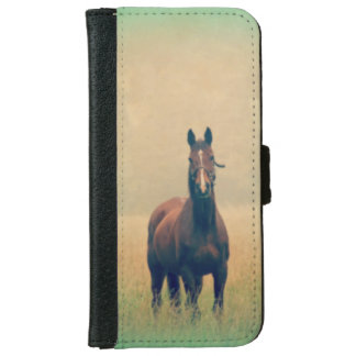 Bay Horse Standing in a Field iPhone 6 Wallet Case