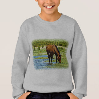 Bay Horse Sweatshirt