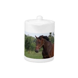 Bay Horse Teapot