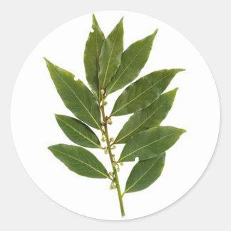 Bay leaves round sticker