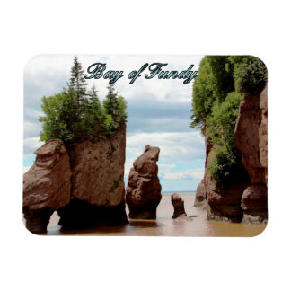 Bay of Fundy Rectangular Photo Magnet