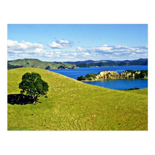 Bay Of Islands, North Island Postcard