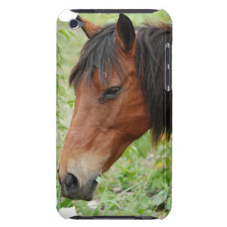 Bay Paso Fino iTouch Case Barely There iPod Case