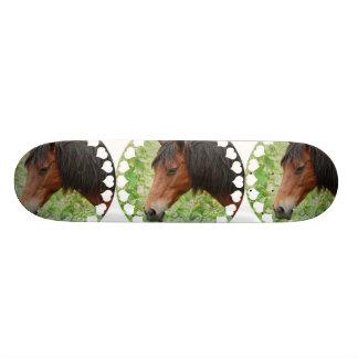 Bay Paso Fino  Skateboard