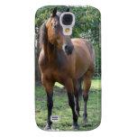 Bay Thoroughbred Horse iPhone 3G Case Samsung Galaxy S4 Case