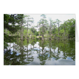 Bayou Reflection Card