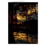 Bayou Sunset Reflection Greeting Card
