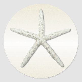 Bayside Single Starfish Champagne Round Round Sticker