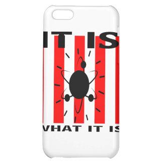 Bazinga Gifts iPhone 5C Cases