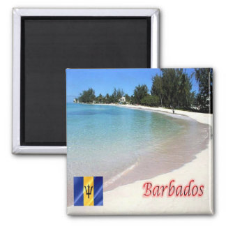 BB - Barbados - The Beach Magnet