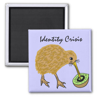 BC- Funny kiwi Bird and Fruit Magnet